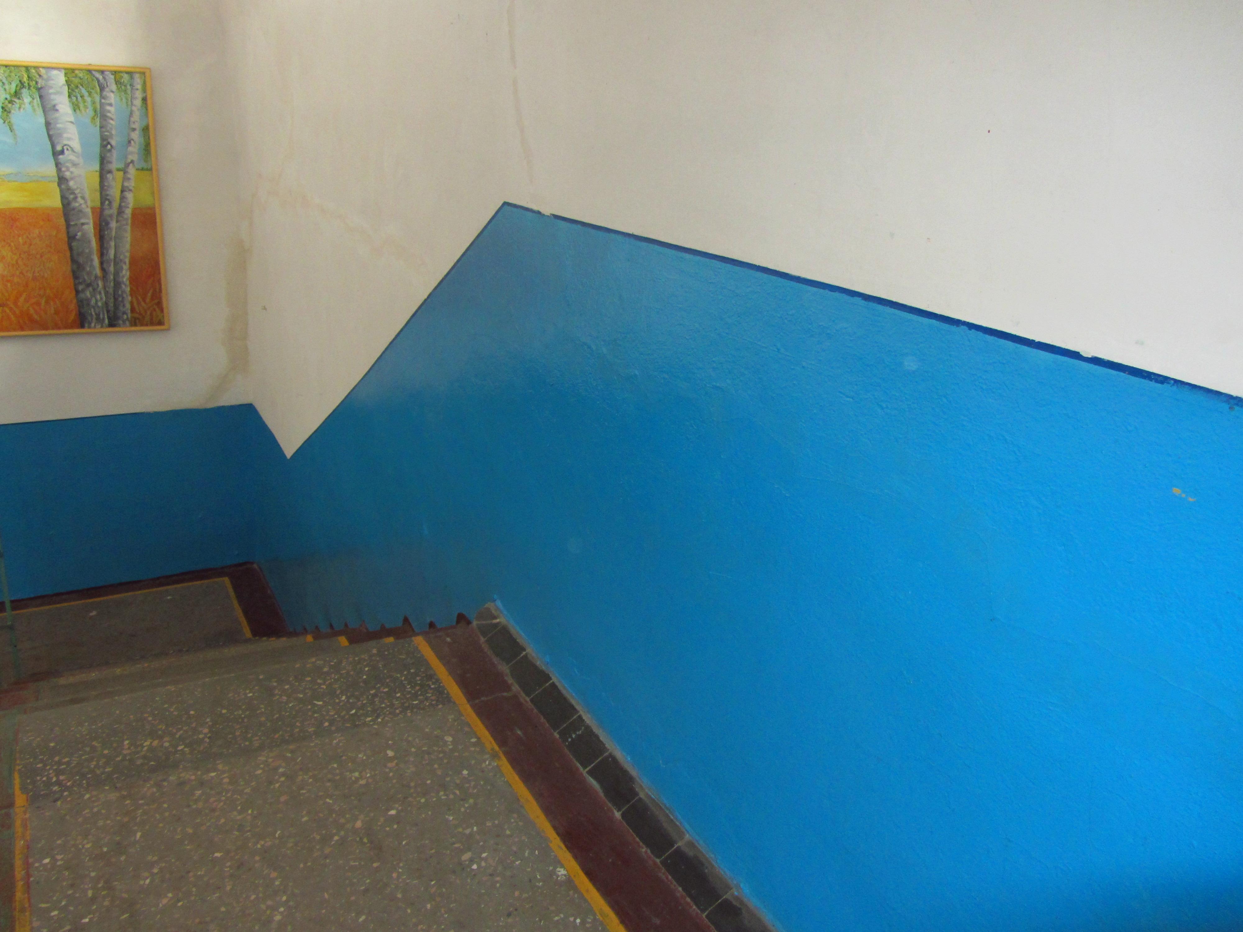 Фарбування стін панелей та вікон.